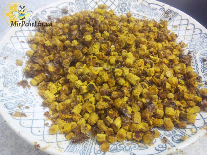 Как добываю пергу (пчелиный хлеб)