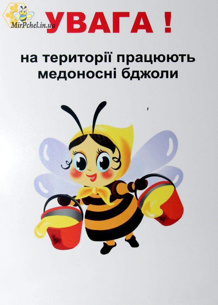Созданы новые  районные союзы пчеловодов